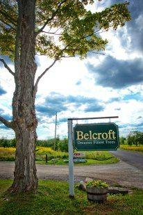 Belcroft Wedding