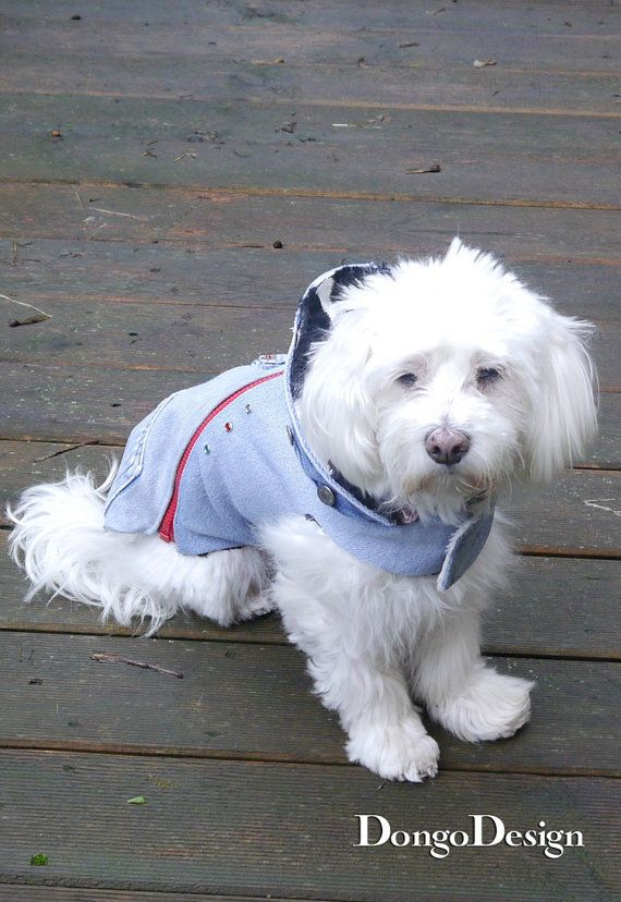 PDF sewing pattern dogs coat jack the zipper e-book sewing ...