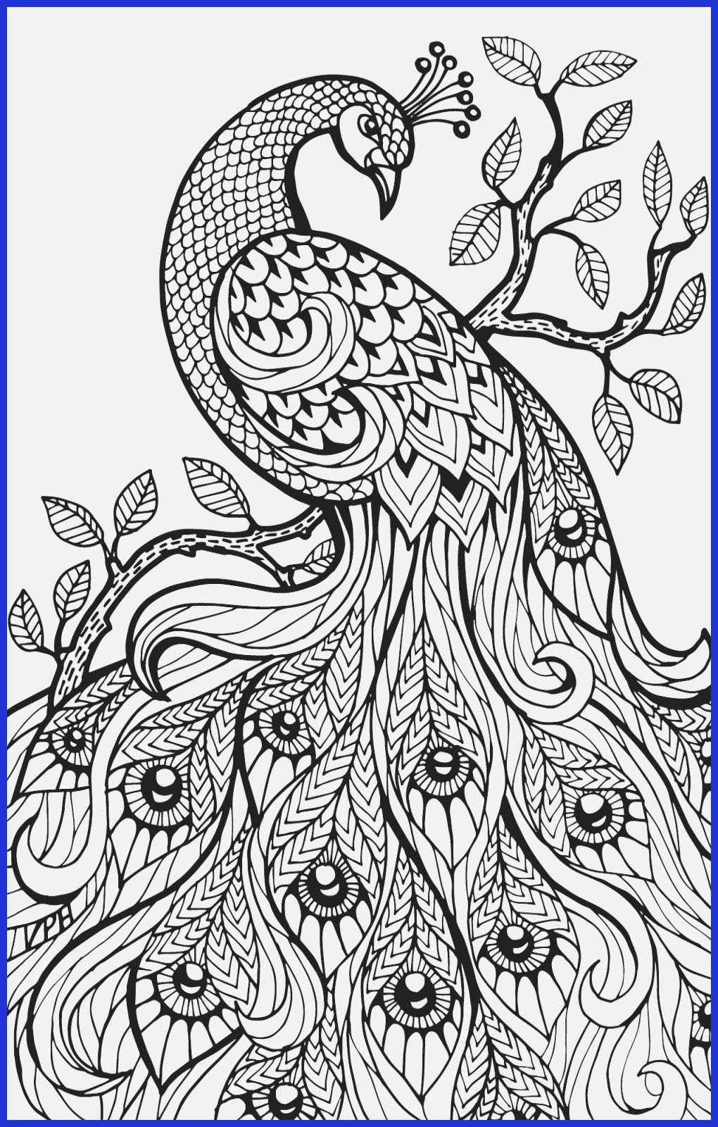 Ta Da The 30 Day Watercolor Challenge Fox Hazel Printable Flower Coloring Pages Flower Coloring Sheets Coloring Pages Inspirational
