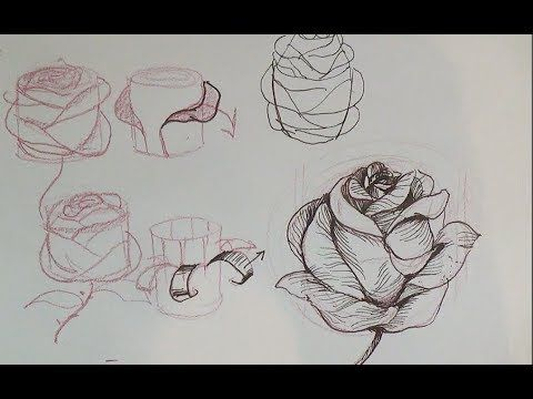 Have fun drawing from these 50 selected rose drawing tutorials each how to draw a rose tutorial has easy step by step instructions or a video tutorial