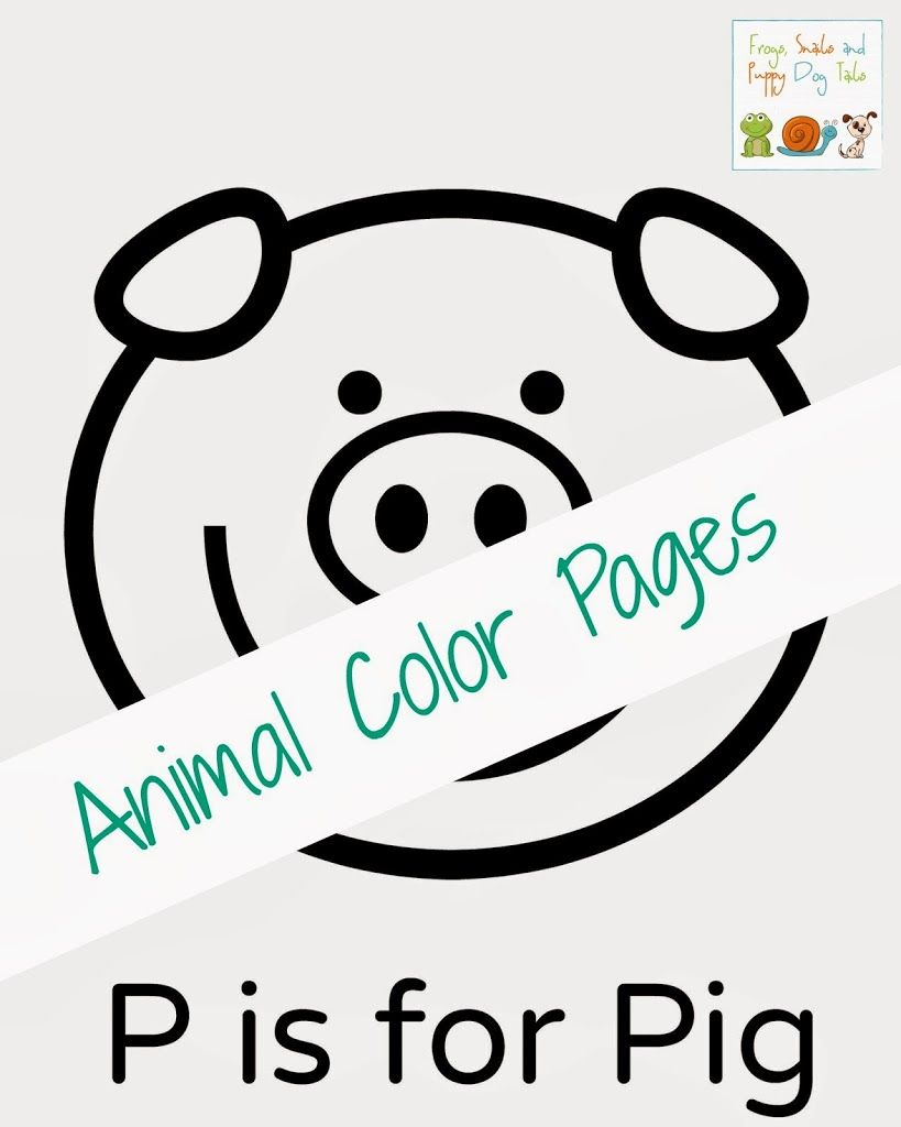 animal color pages for kids
