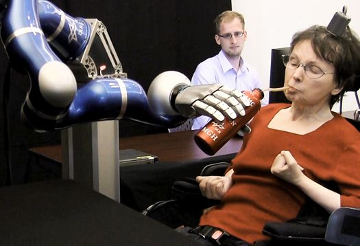 Two people with paralysis were able to control robotic arms using only their thoughts—and the help of a new interface system. #latePost 2012