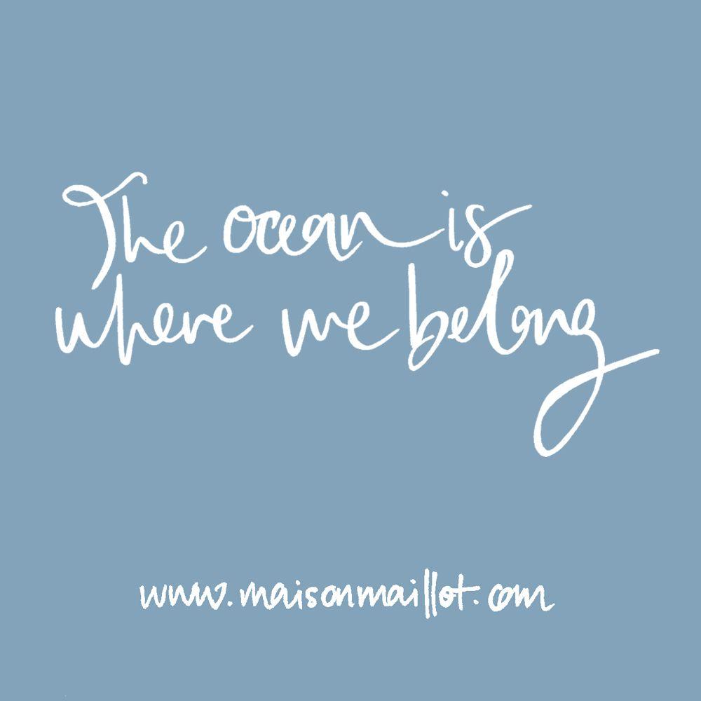 Encouragement Quote The Ocean Is Where We Belong Inspo Quote Ocean  Quotes