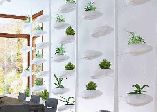 Danielle TrofeS Live Screen Is A SelfWatering Wall Built For