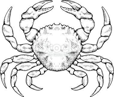 Illustration of a crab iconos logos illustration - Dessiner un crabe ...