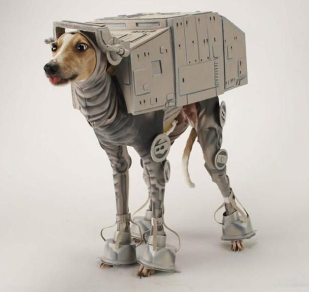 Skinny Dog Dressed As An At At From Star Wars Pet Halloween