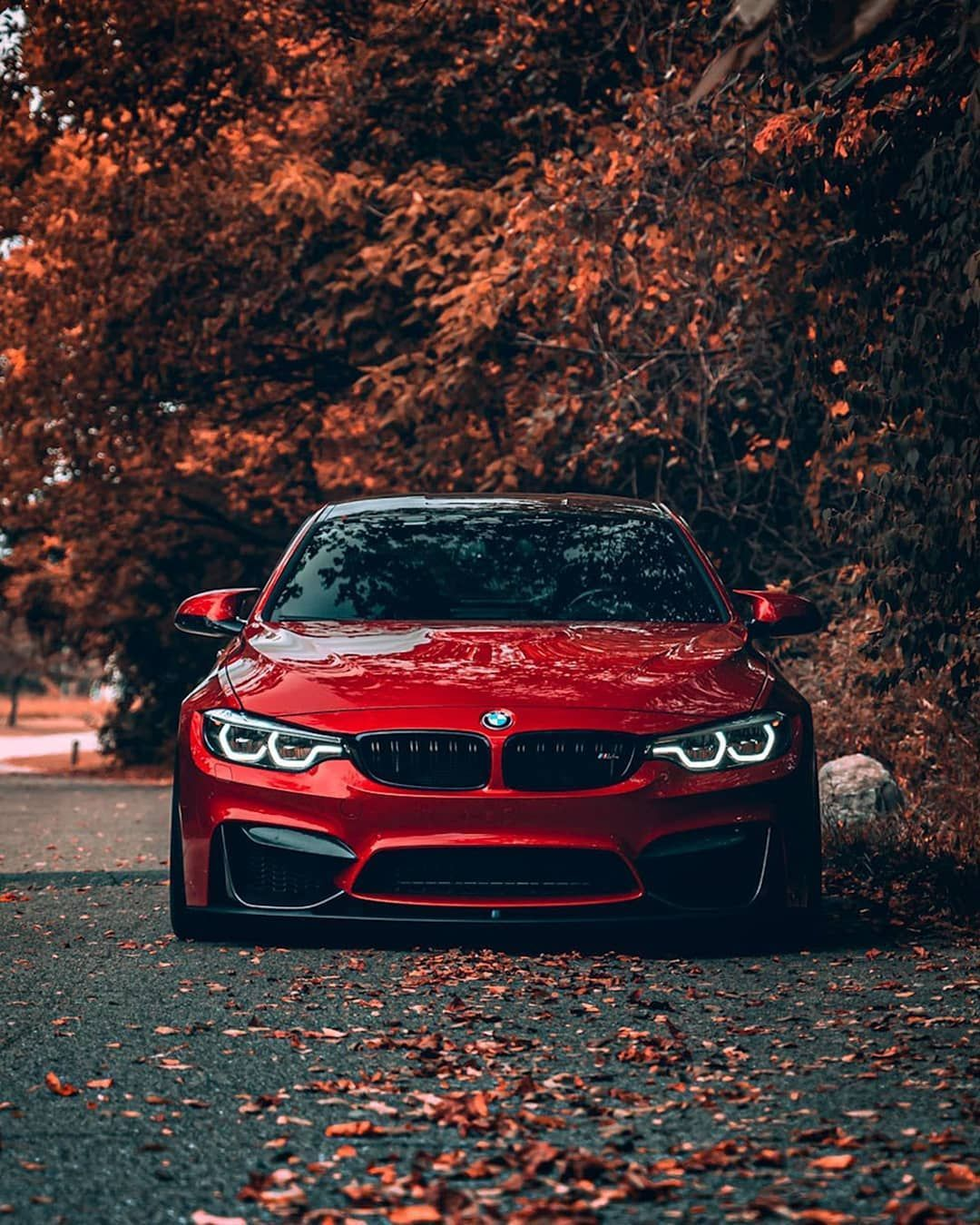 Bmw Offroad Car Bmw Offroad Bmw Luxury Cars Bmw Bmw M4 Coupé