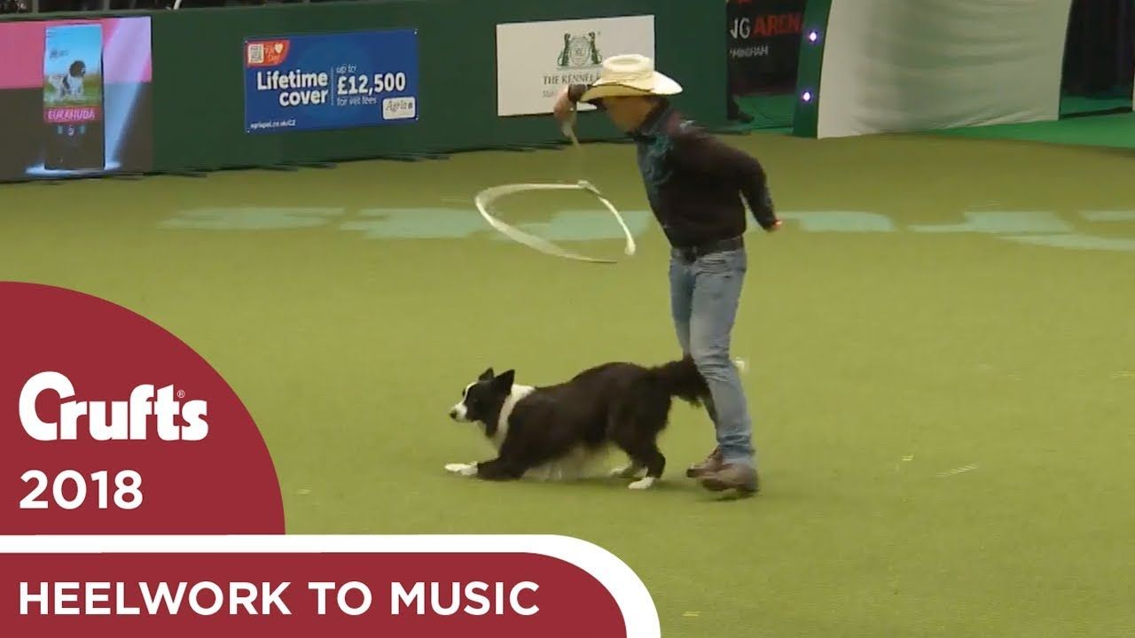 Amazing Cowboy Routine In Freestyle Heelwork To Music Crufts