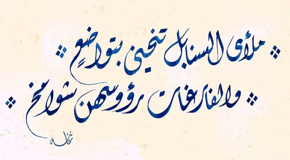 خط ديواني Calligraphy Words Wisdom Quotes Arabic Words