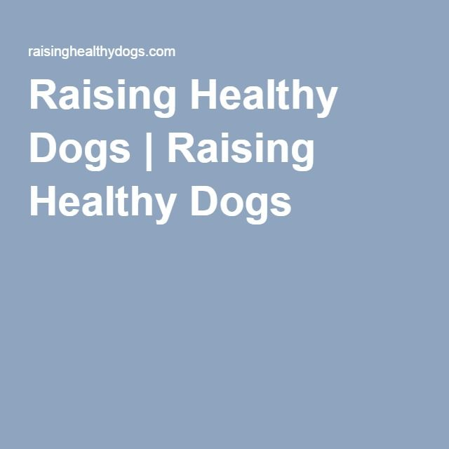 Raising Healthy Dogs   Raising Healthy Dogs