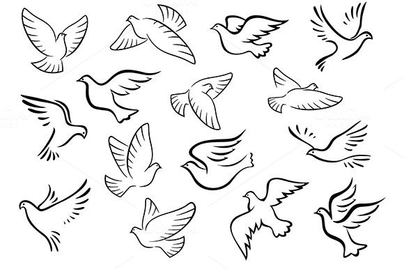 Pigeon And Dove Birds Silhouettes Dove Images Bird Silhouette