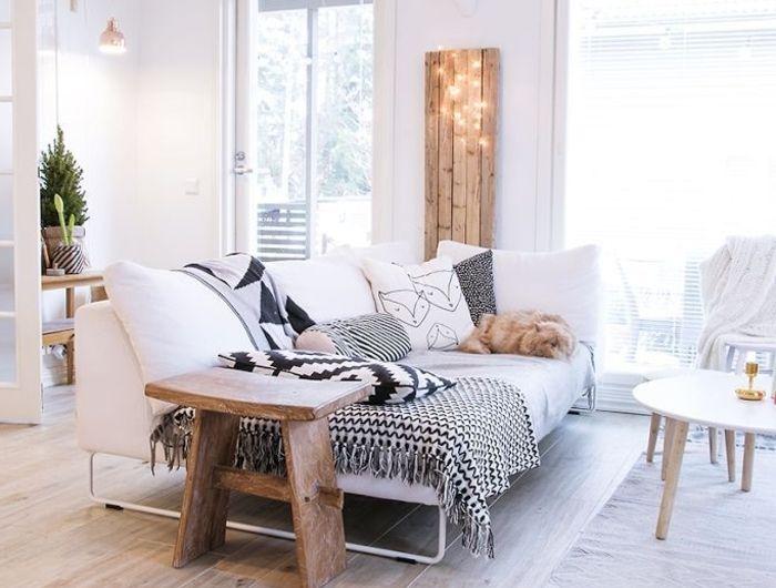 1 meubles scandinaves salon de couleur taupe sol