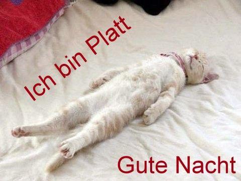 Bin Platt Bilder