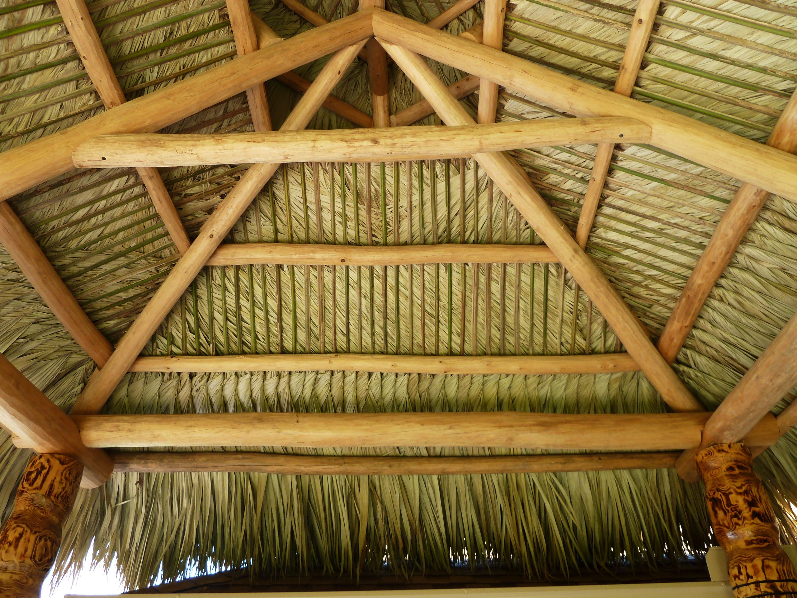 thatched roof made from real palm fronds florida palmtrees