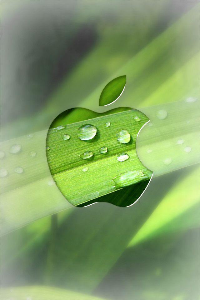 редактор фото для айфон с зеленым яблоком том, что этот