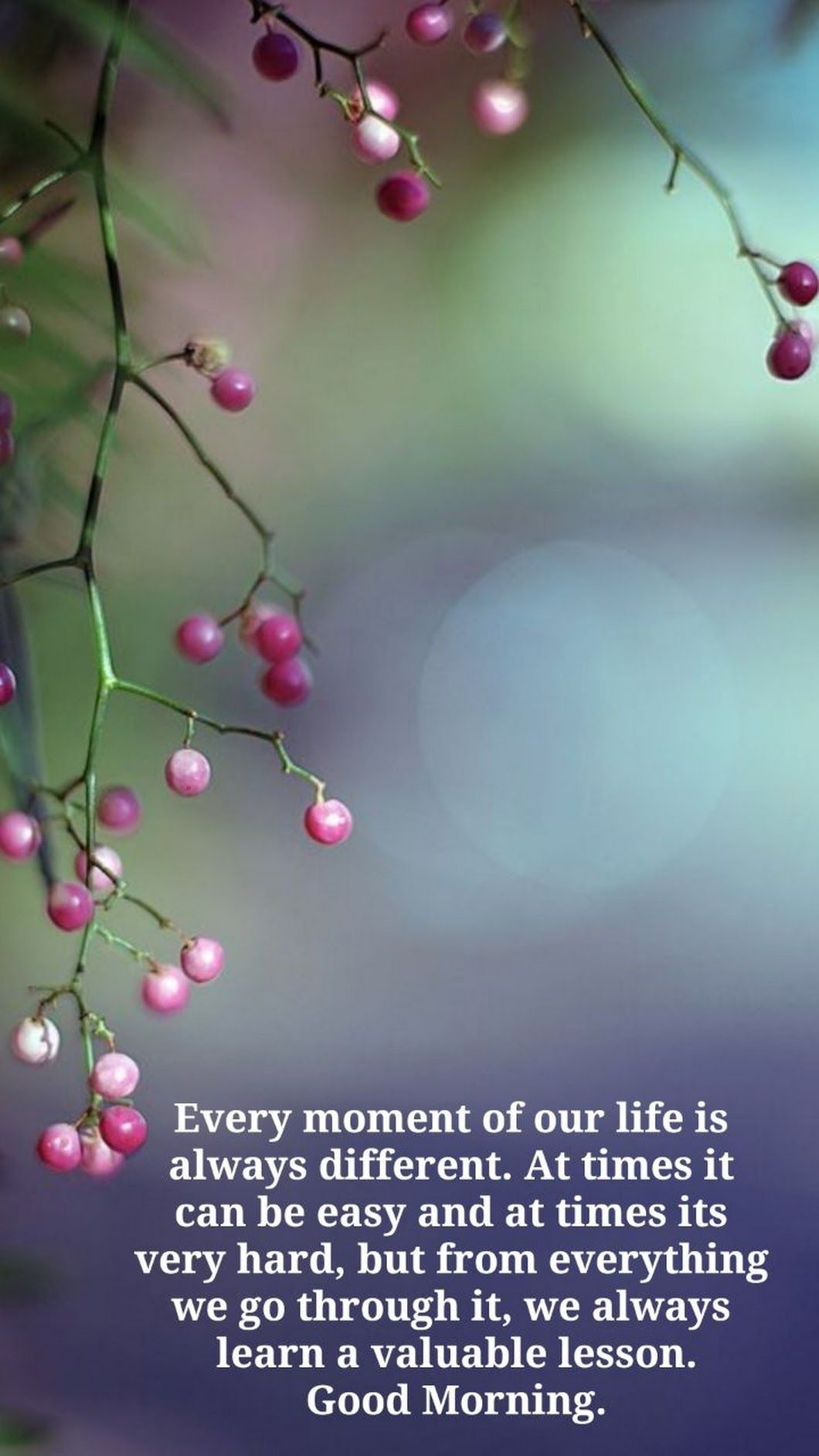 Good Morninghave A Lovely Day Health And Wisdom Quotes