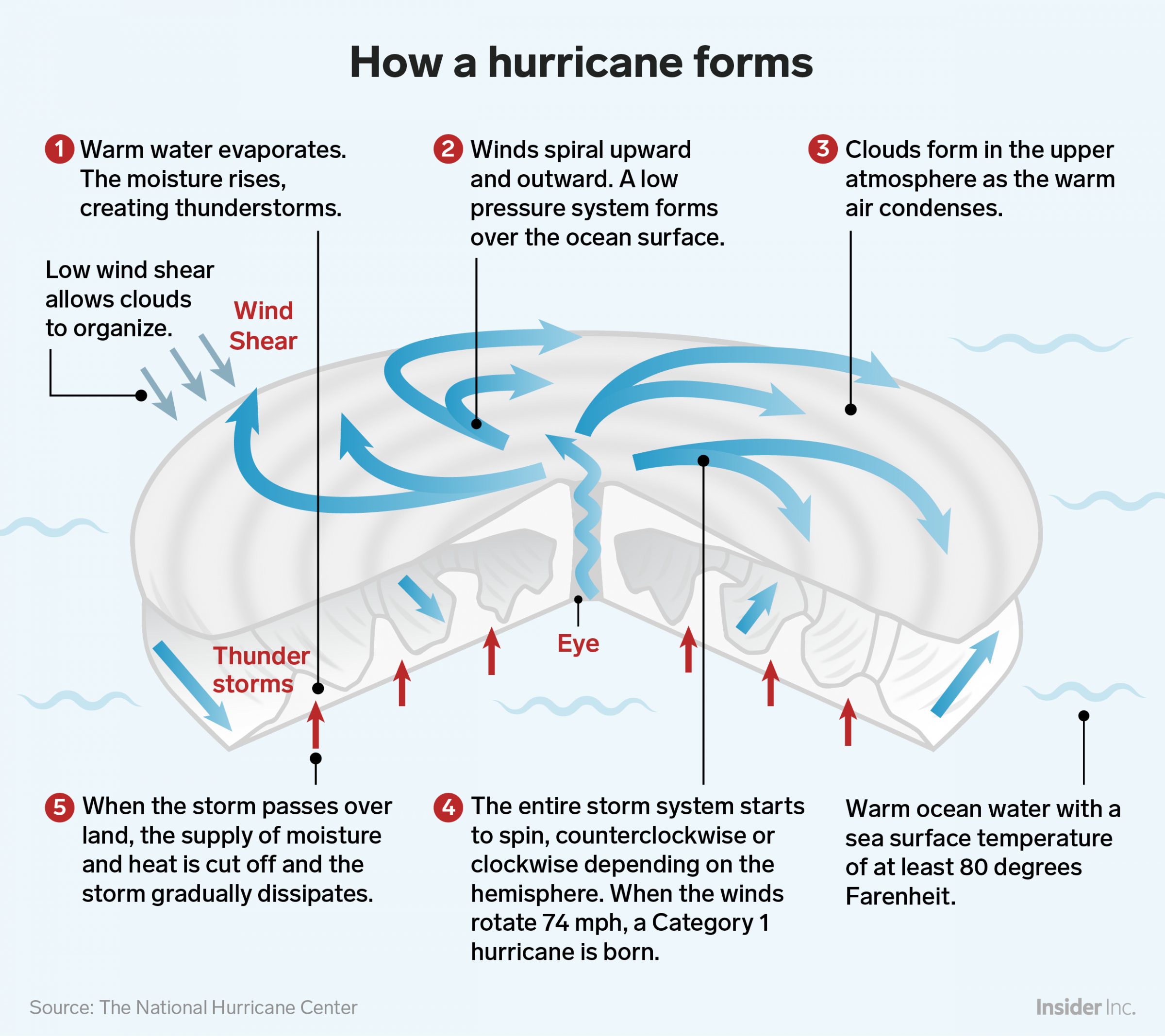 How Hurricanes Like Florence Form How Hurricanes Form Hurricane Storm