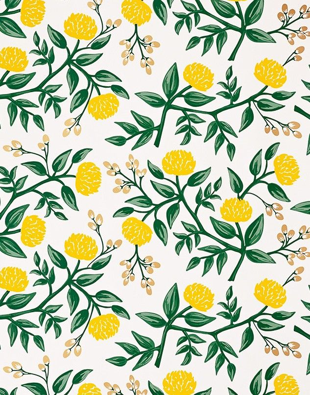 Rifle Paper Co. for Hygge & West Peonies Wallpaper in
