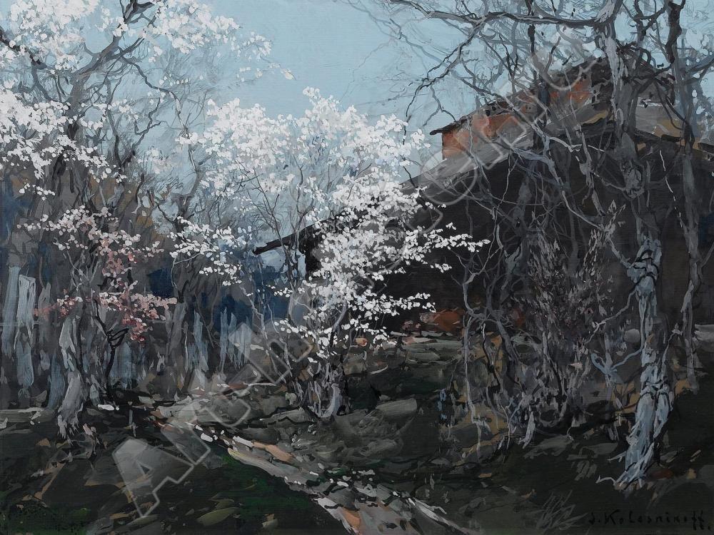 kolesnikov_26 - Степан Колесников - Terra Incognita. Сайт Рэдрика