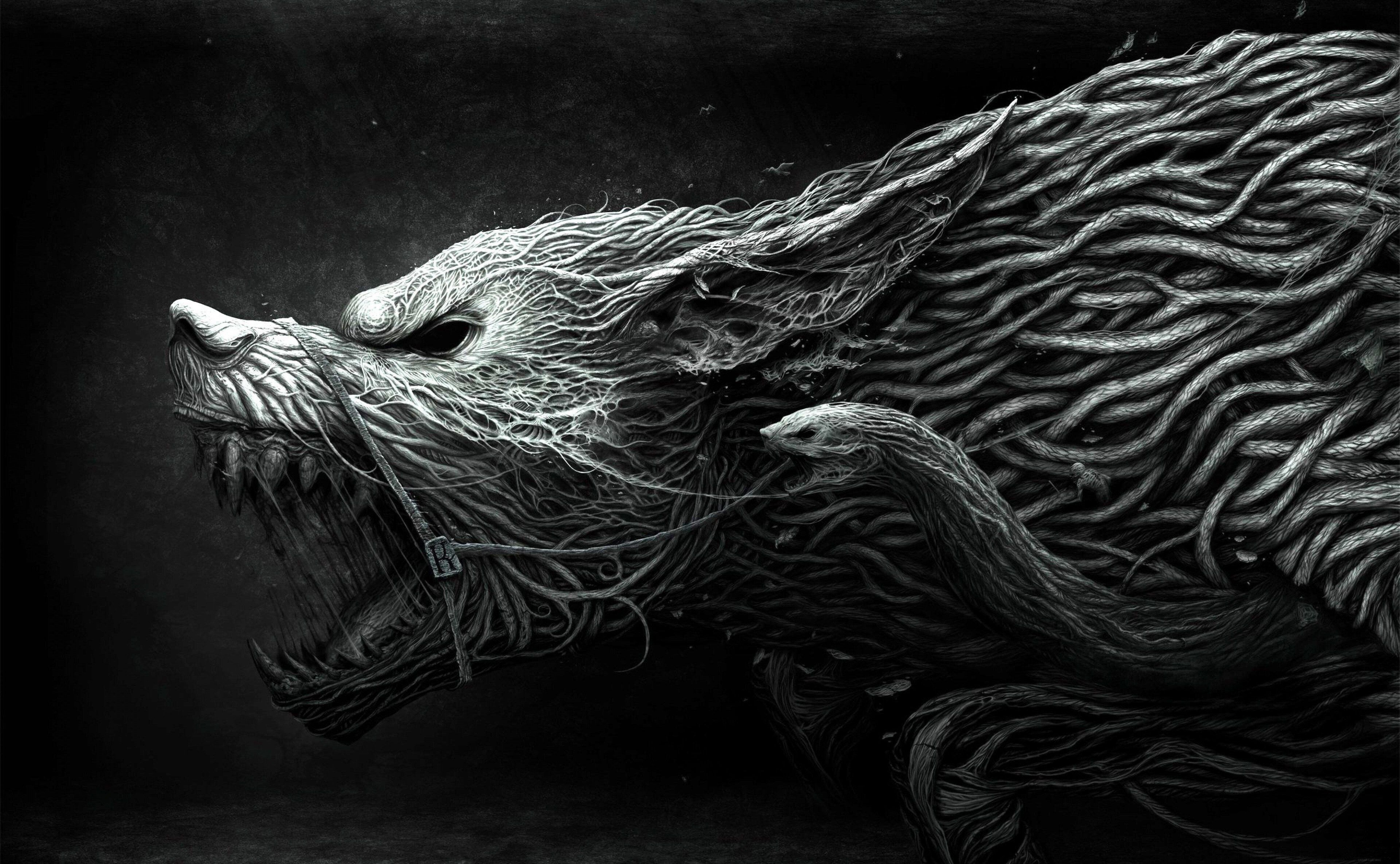 3840x2370 Wolf 4k Pc Wallpaper Wolf Wallpaper Animal Wallpaper Art Wallpaper