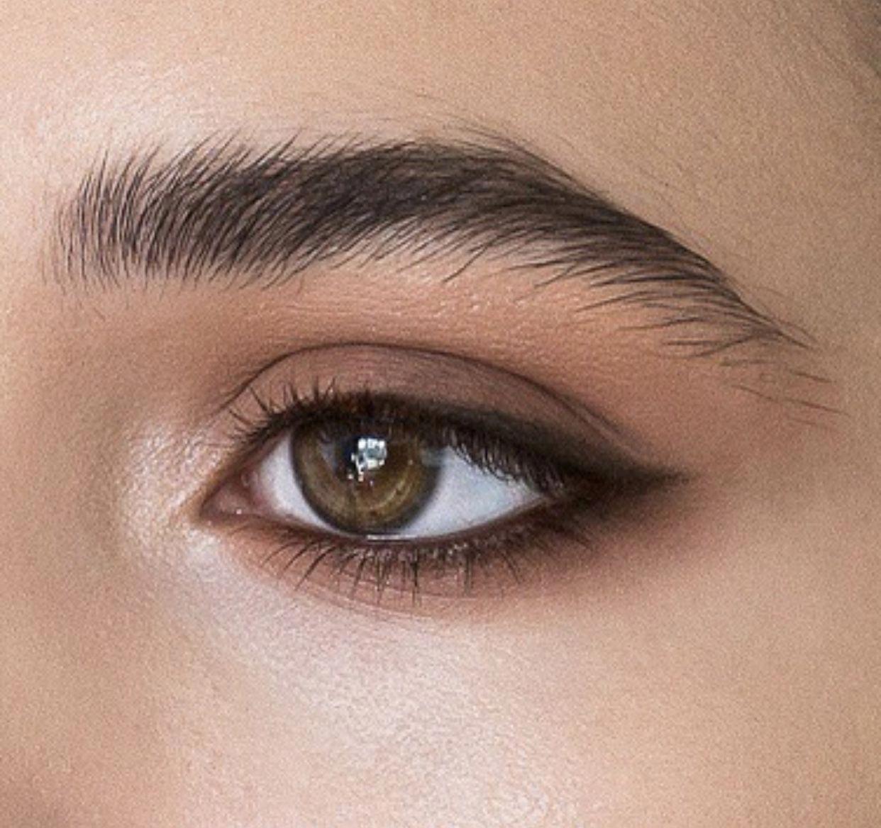 Really Great Naturaleyemakeup In 2020 Easy Makeup Tutorial Makeup Tutorial Eyeshadow Simple Makeup