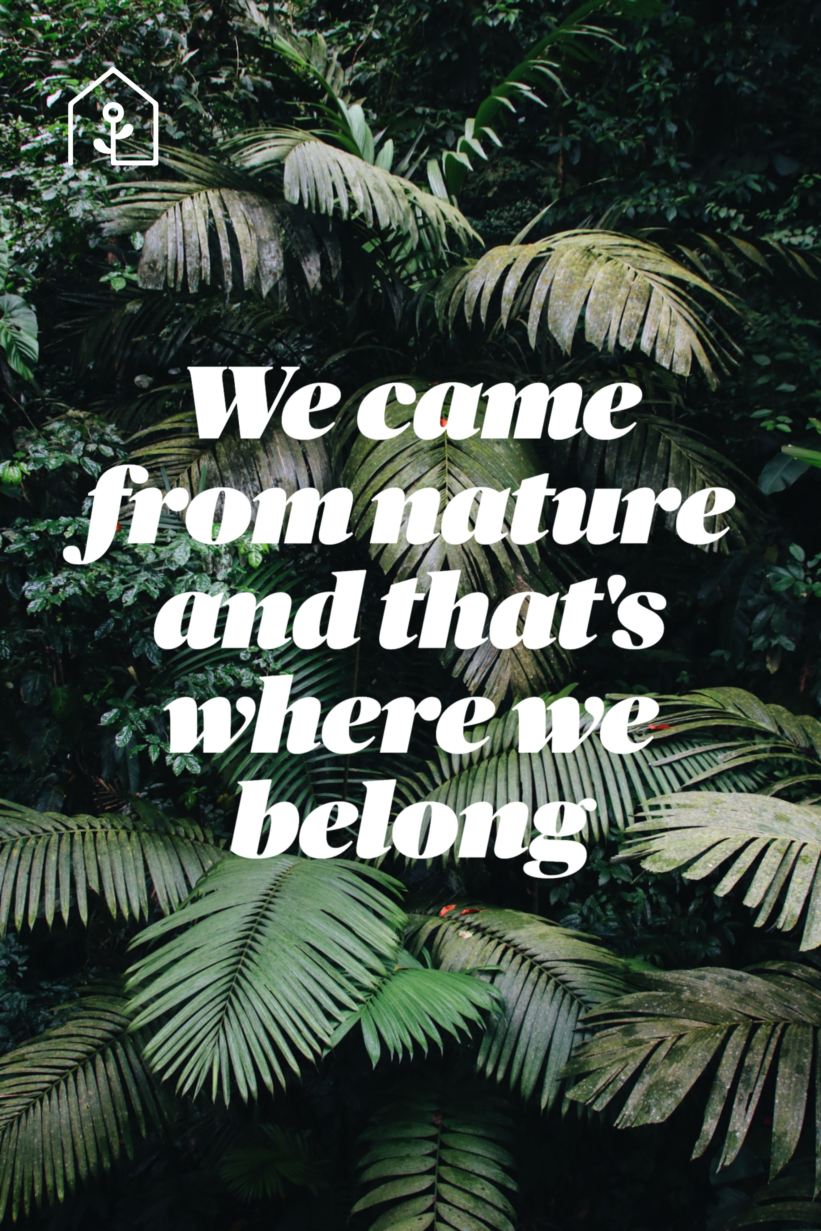 At Forest Homes, we keep nature close in our indoor spaces because nature is always inspiring us to be better, to gain clarity, to be strong and determined, to flow, adapt and let go.  We help you connect to nature in your indoor spaces at Forest Homes.  #interiors #naturelovers#natureinspired#naturalliving #natureatheart #naturalboost #natureinside #natureeverywhere #positivity #natureinspired #lovenature #powerfulnature #naturedecor #naturalspaces #wellbeing #indoornature #urbannature