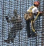 Rodbusters - hard, backbreaking work  | ironworkers | Iron work