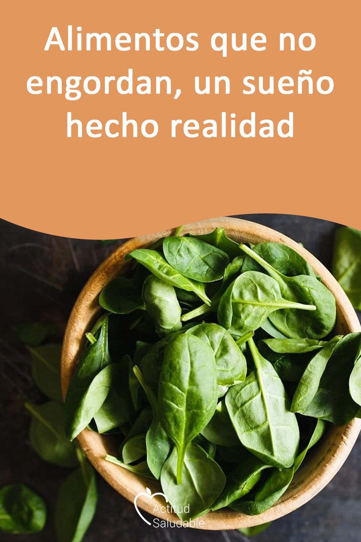 Alcachofa para adelgazar en infusion lounge