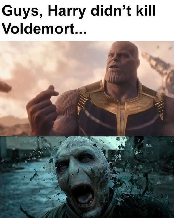 Top 32 Thanos Memes With Images Harry Potter Memes Hilarious