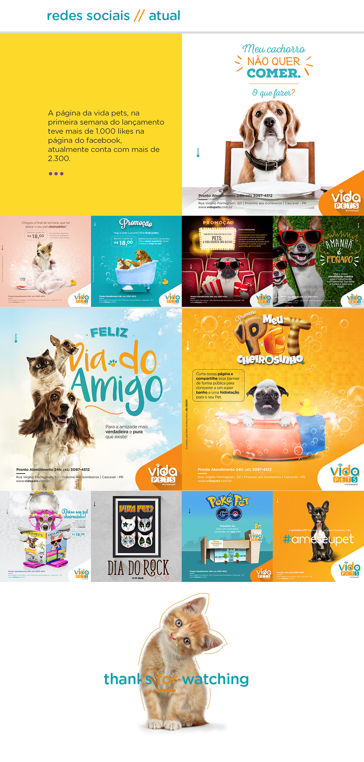 Projeto Vida Pets On Behance Midias Sociais Marketing De Midia Social Redes Sociais