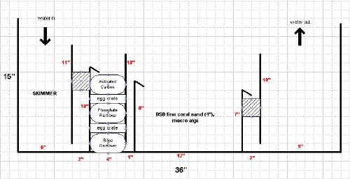 Saltwater Sump Diagram Faqs About Sump Filters Design