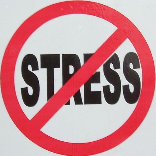 Image result for Avoid Stress