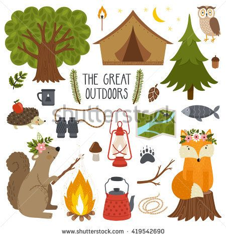 Set Of Cute Animals And Camping Equipment