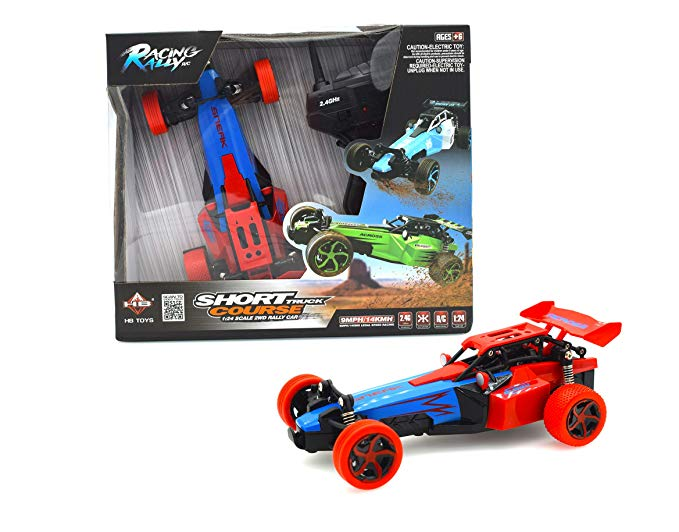 PAPA TOYS Electric Off Road RC Cars High Speed