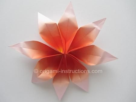 Diy origami diy origami 2 unit flowers paper flowers pinterest origami flower instructions in link mightylinksfo
