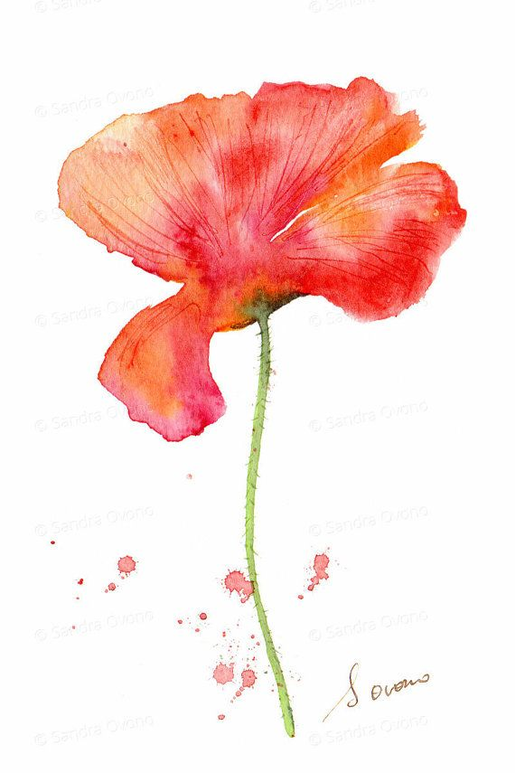 Orange And Red Poppy Watercolor Print Small Flower Painting