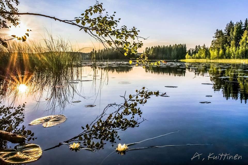 ???????? Summer morning (Finland) by by Asko Kuittinen ???? #naturallandmarks