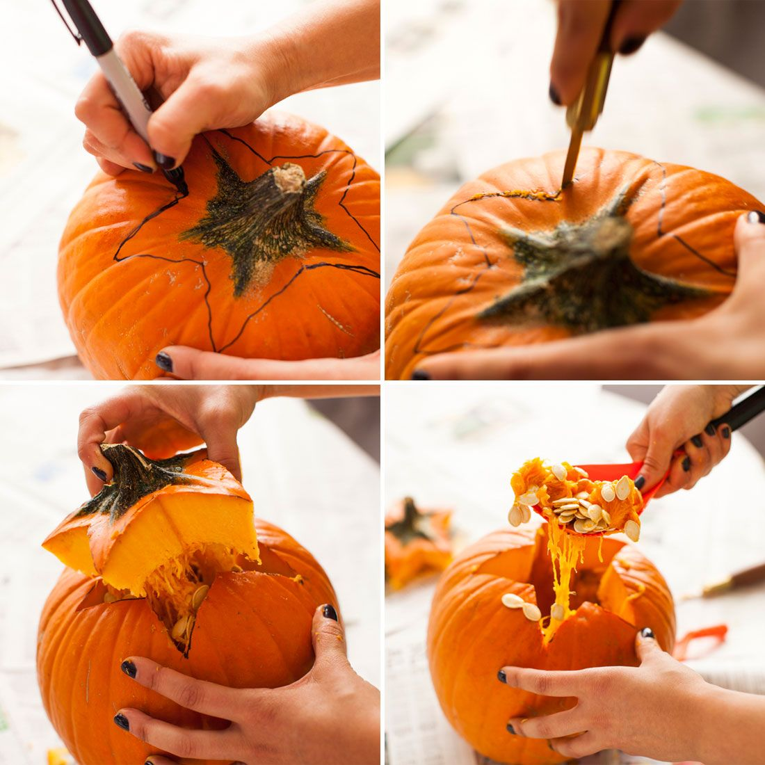 Creep to This Anatomy Pumpkins Pumpkin, Pumpkin carving