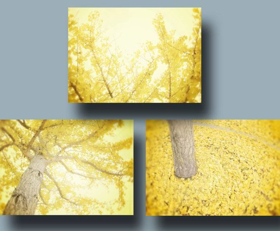 Charmant Yellow Wall Art Set Of Three, Yellow Tree Photography, Lemon Yellow Modern Wall  Art
