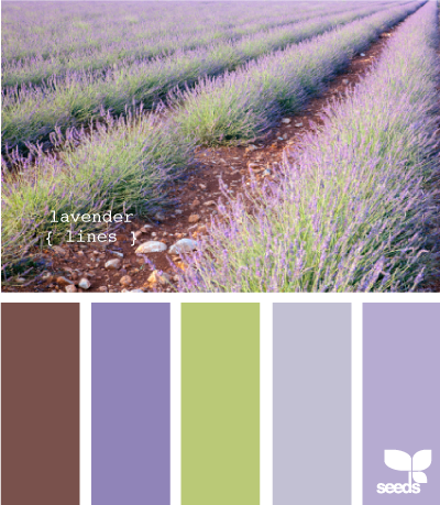More and more I'm noticing that the colors we have chosen for our walls are pure pastels.  Next on the list is a lavender family room.