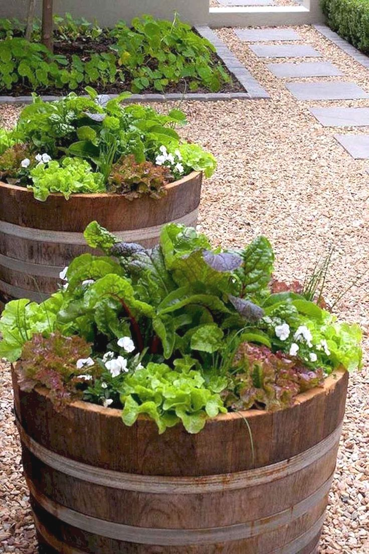 Veggie Garden Beds Design in 2020   Small vegetable ...