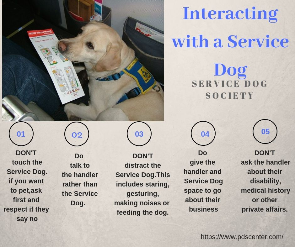 Service Dogs For America Continues The Rich Tradition Of