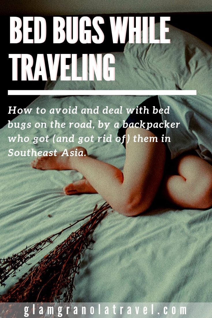 Bed Bugs While Traveling How to Avoid and Deal With Them