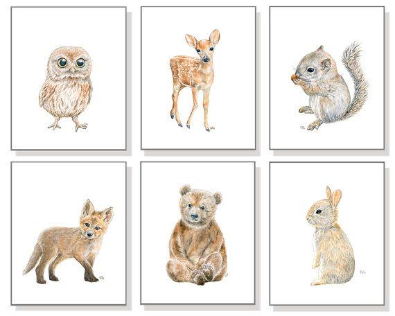Baby Animal Nursery Art Animal Print Printable Art Nursery Poster Woodland Animal Raccoon Print Baby Room Print Nursery Wall Decor