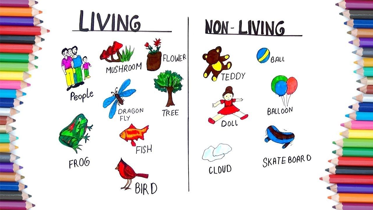 How To Draw Living And Non Living For Kids Birthday Calendar Classroom Drawing For Kids Worksheets For Class 1 [ 720 x 1280 Pixel ]