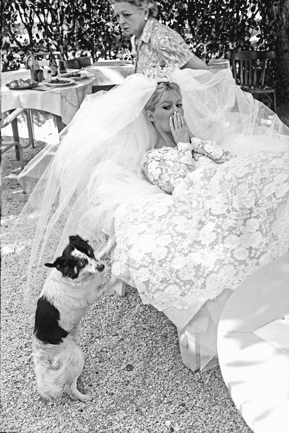 Photo of Bardot, Hepburn, Kelly under the stars with pets on the French Riviera