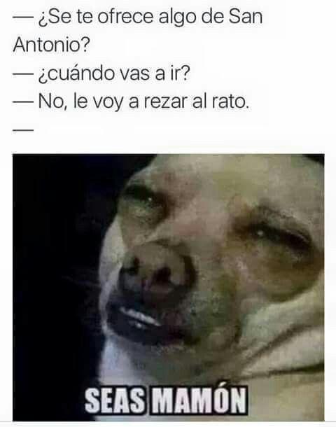 Pin De Cristygarciaflores Garciaflore En De Risa Memes Graciosos Memes Divertidos Memes