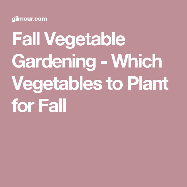 Which Vegetables To Plant For