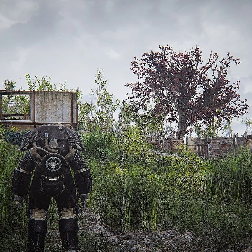 After applying the seasons mod (spring) and more grass mod (medium) not sure about the grass.. Might apply grasslands over it.. but I wanted good looking leaves on all the trees and here they are  #fallout #fallout4 #gaming #powerarmor #mod #grass #nature