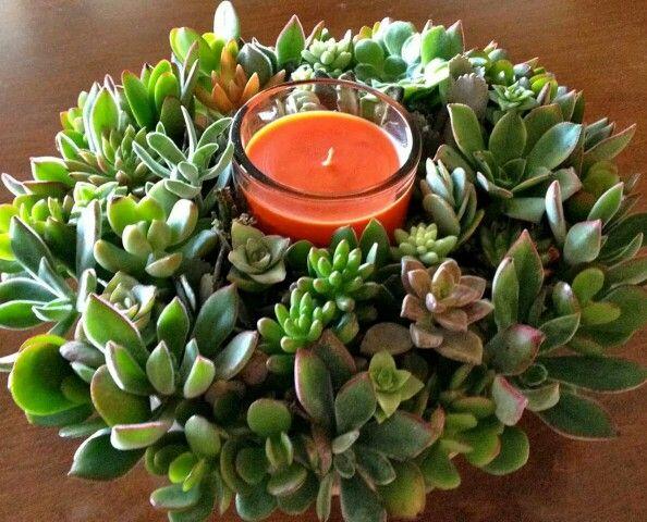 Centro de mesa navide o con suculentas ideal para estas - Plantas suculentas colgantes ...